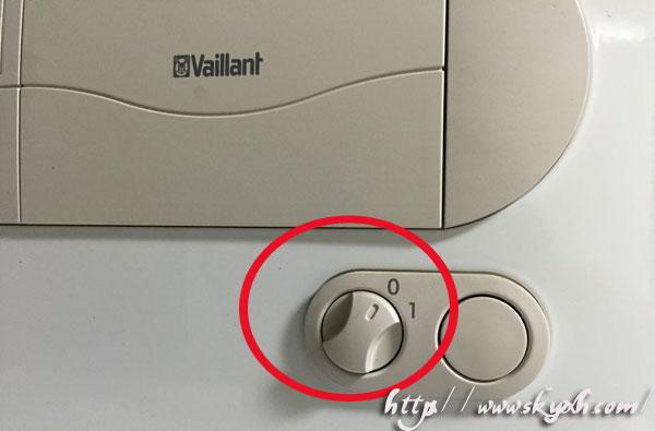 Vaillant7