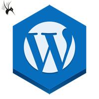 加速wordpress2.9后台首页控制板显示速度的方法